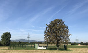 Praunheim Pumpe