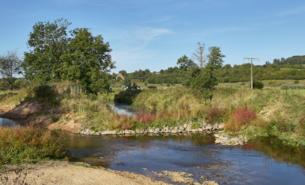 """Renaturierter Nidder im FFH-Naturschutzgebiet """"Salzwiesen und Weinberg"""" in Ortenberg-Selters."""