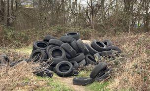 Wild abgelagerte Reifen auf einem verwilderten Grundstück
