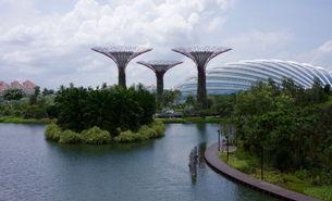 Singapur Gartenpark