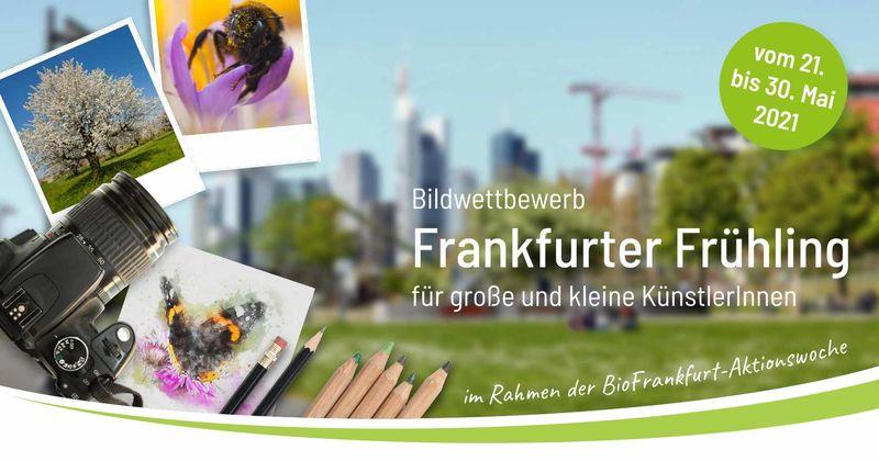 BioFrankfurt Bildwettbewerb 2021