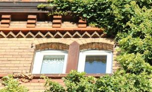 Gebäudefassade mit Efeubewuchs