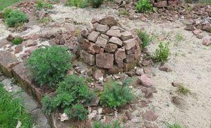 Steinhaufen auf Sand mit standortgerechter Bepflanzung