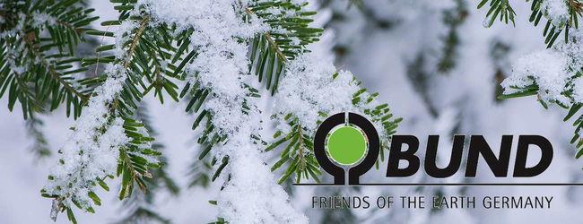 Newsletter Winter_Header